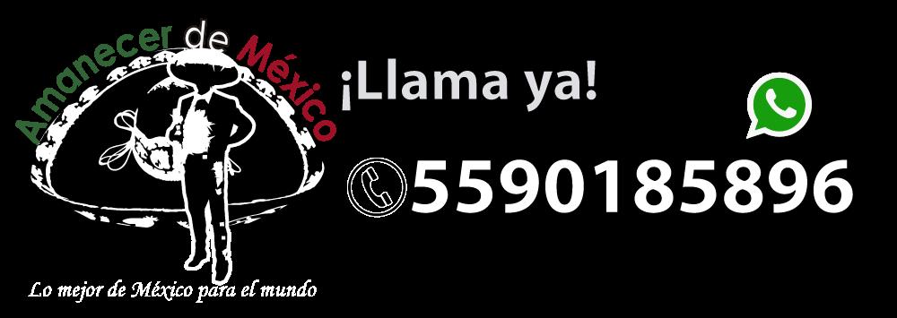 Mariachis Amanecer de México